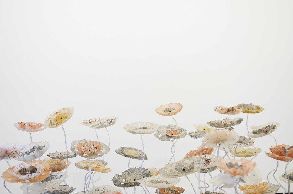 botanics-6.jpg
