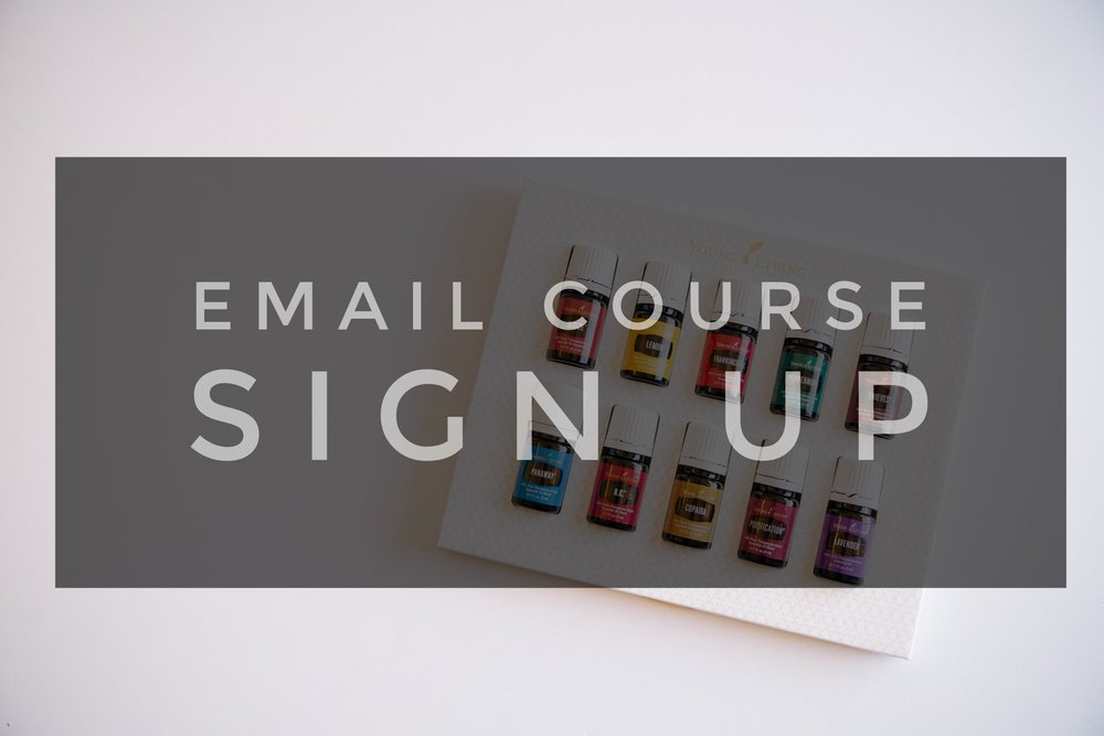 Don't miss out! Sign up NOW for this free introductory email course.