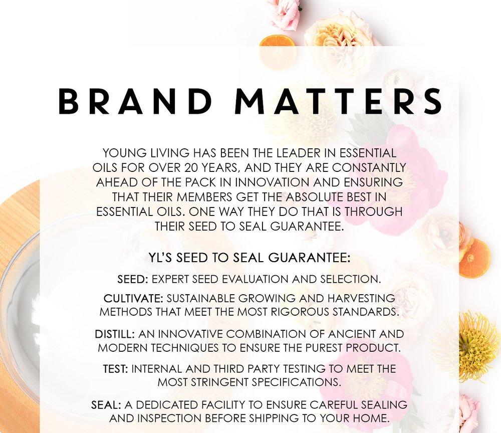 brandmatters