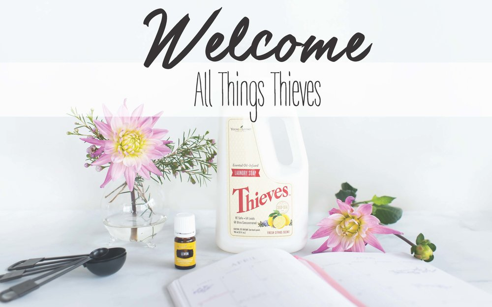 All_Things_Thieves