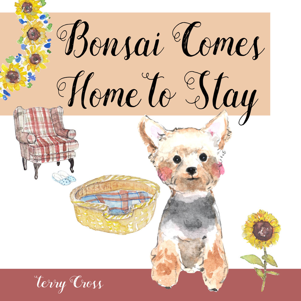Bonzai Comes Home to Stay