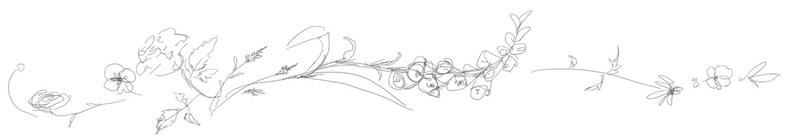 Untitled design (5).jpg