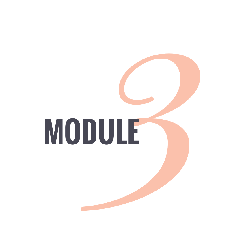 Module 3.png