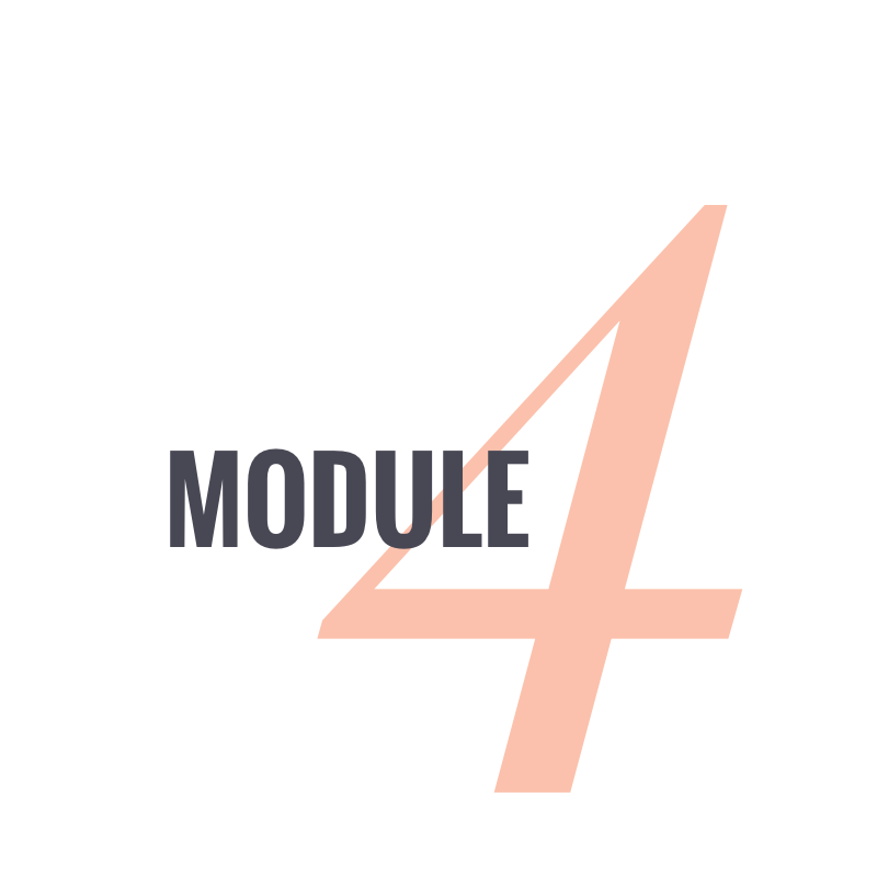 Module 4.png