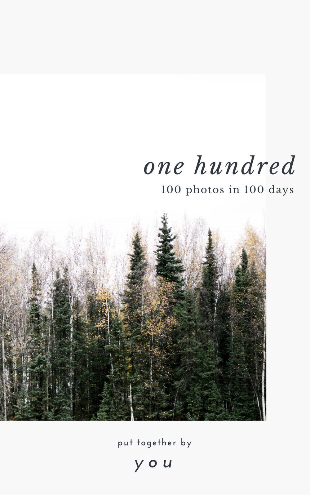 One-Hundred-Photo-Ebook-Journal-By-Shayne-Nuesca