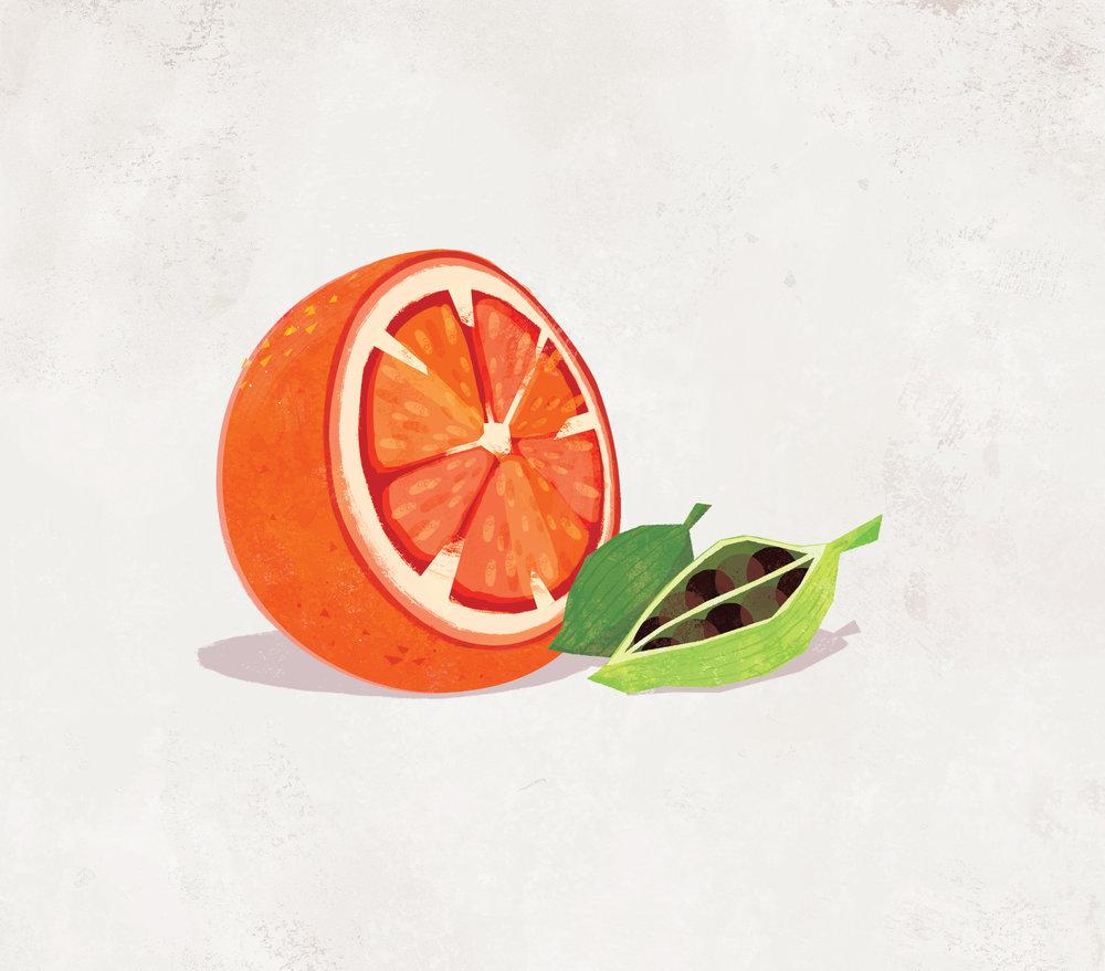 fl_orange.jpg