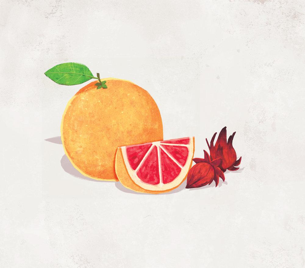 Grapefruit & Wild Hibiscus
