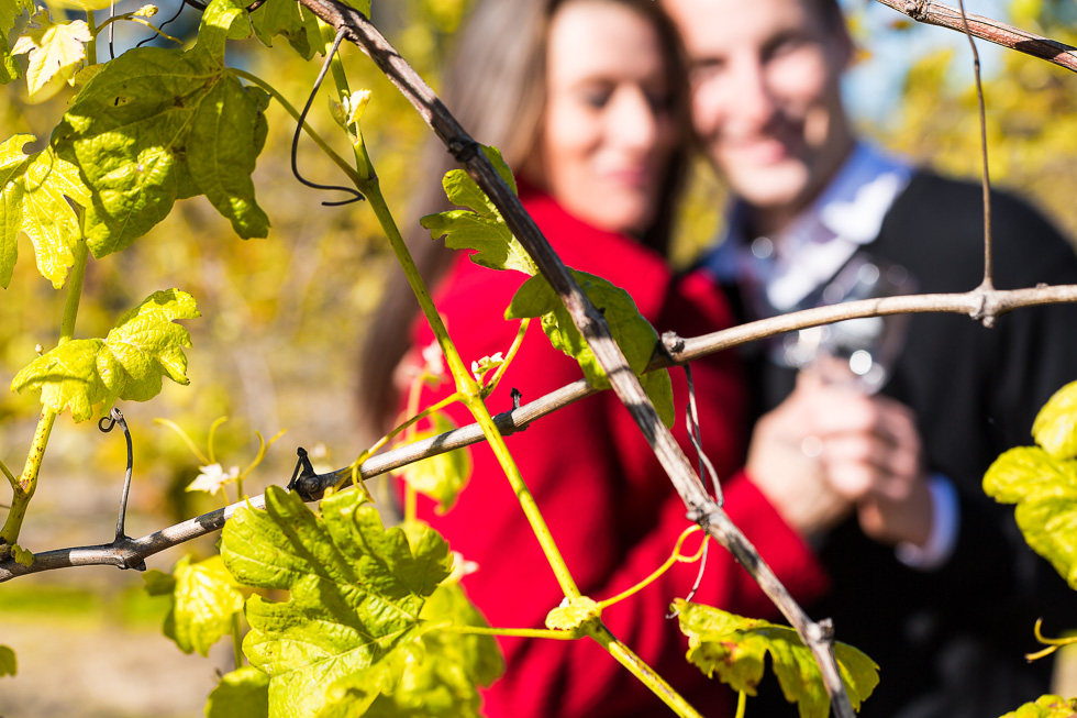 Couple in the vineyard by Fred McKie