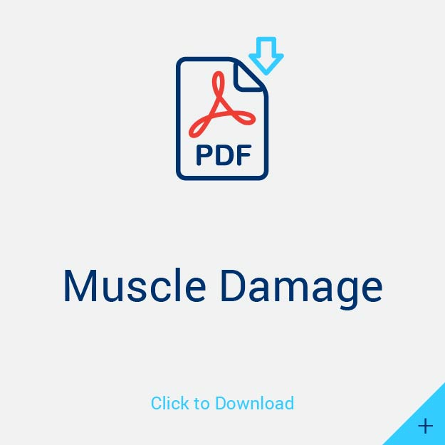 Muscle Damage