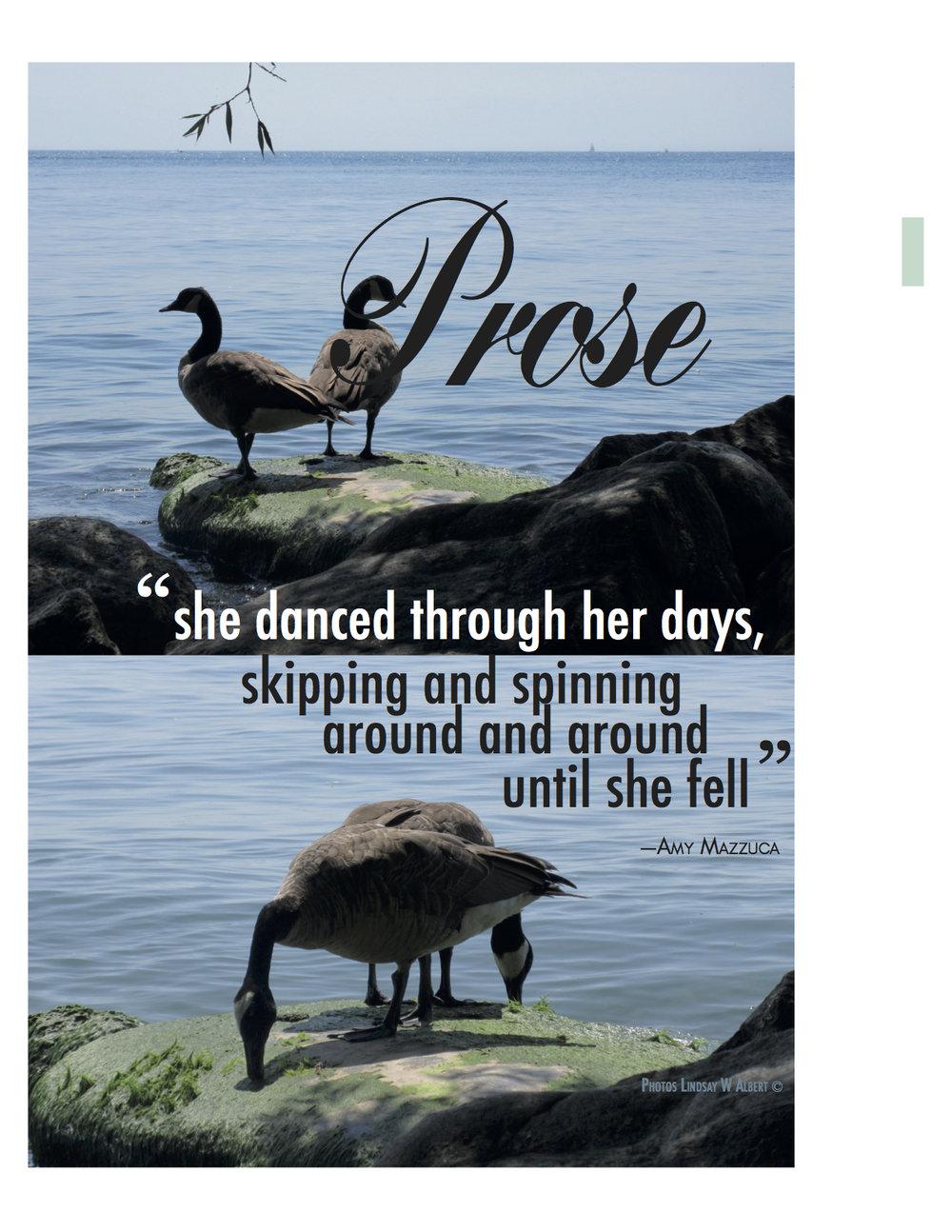 Artis 3 Lindsay Prose cover geese.jpg