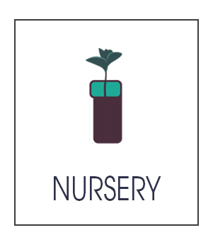 Gallery-Nursery4.png