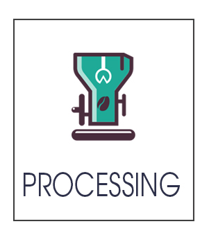Gallery-Processing4.png