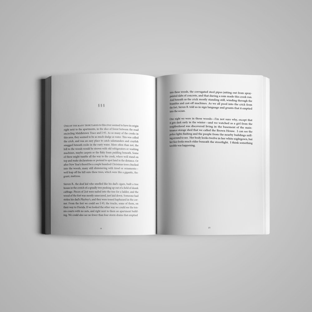 Book interior (3) for  Monster House Press .  River  by Ross Gay & Richard Wehrenberg.  2014.