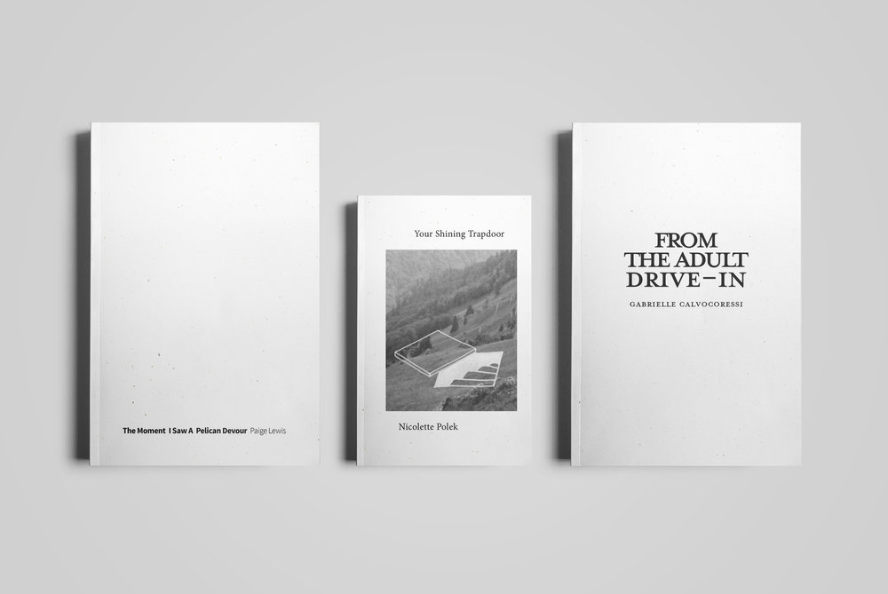 Covers for  Monster House Press . 2018 Pamphlet Series.  The Moment I Saw A Pelican Devour  by Paige Lewis;  Your Shining Trapdoor  by Nicolette Polek;  From The Adult Drive-In  by Gabrielle Calvocoressi. 2018.