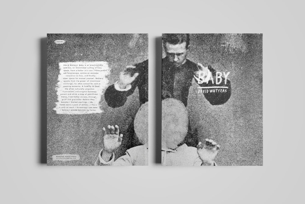 Cover for  Monster House Press .  Baby  by David Watters.  2016.