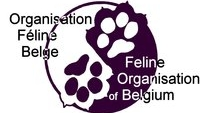 Cat Club Belge WCF