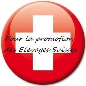 logo elevage suisse.jpg