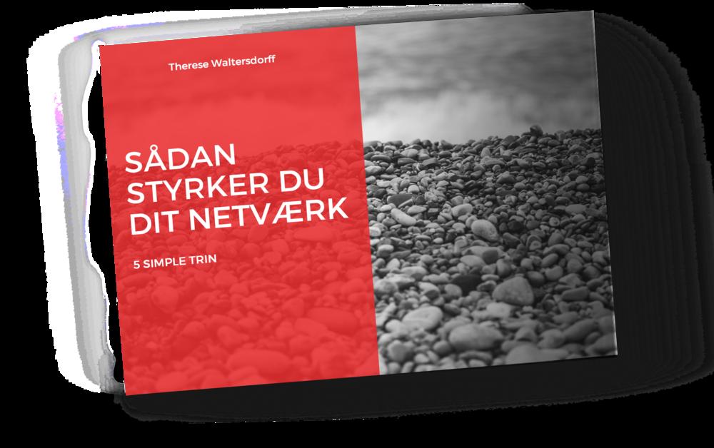 Få pdf-versionen af min bog om netværk - Fremtidens arbejdsmarked skriger efter relationsskabelse.Jeg skrevet denne miniguide baseret på mine erfaringer fra min karriere i erhvervslivet, hvor det at netværke har skaffet mig jobs, kunder, viden, muligheder og inspiration.God fornøjelse!Therese Waltersdorff