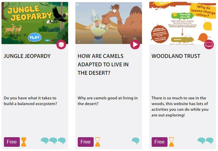 A screenshot from Wow Science , a carefully curated site for fun science learning