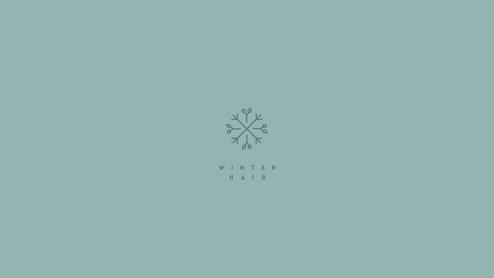 WINTER HAIR  Hair salon's identity