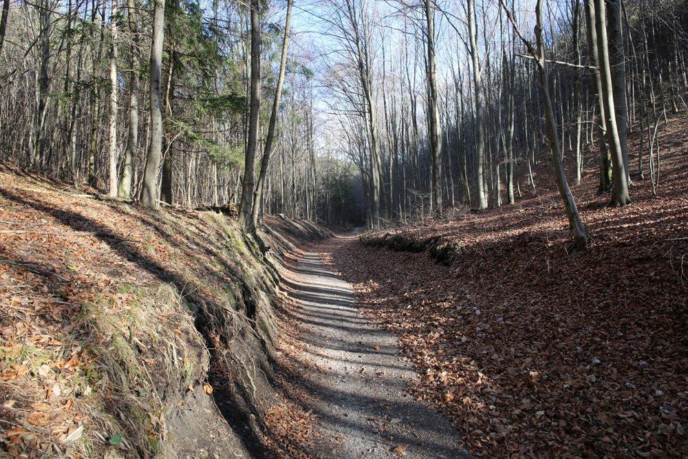 Von Gainfarn aufs Eiserne Tor (Wolfsgeistrunde)