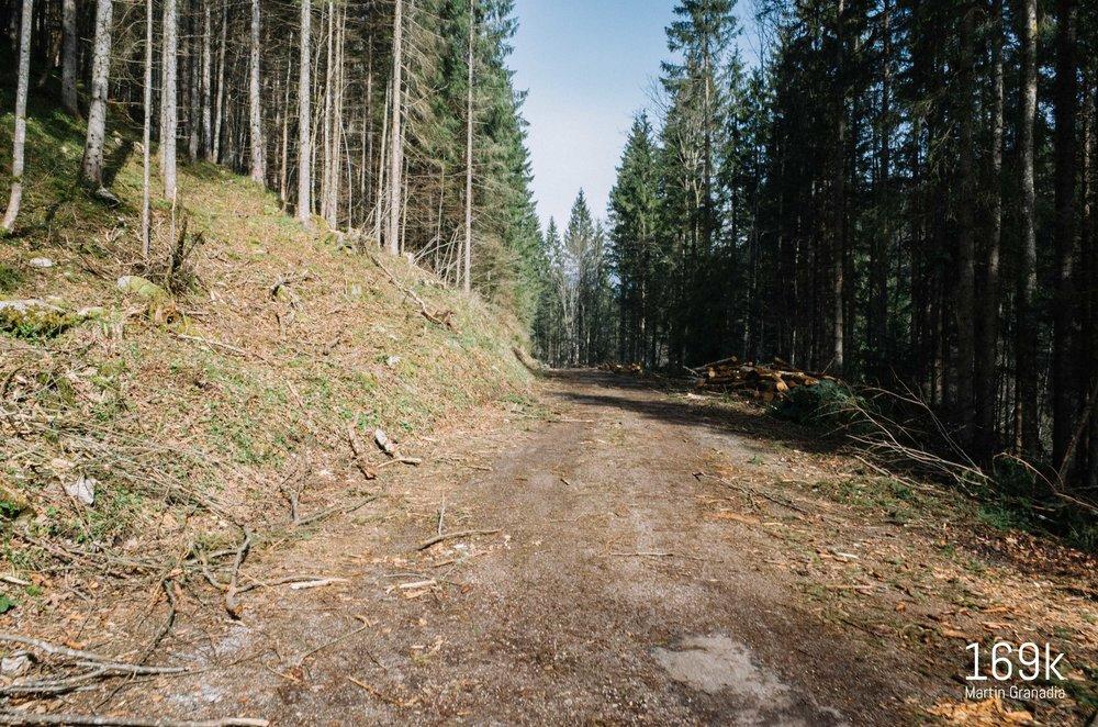 Als ob Schotter und Stein noch nicht genug werden, kommen auch noch Holzarbeiten dazu...