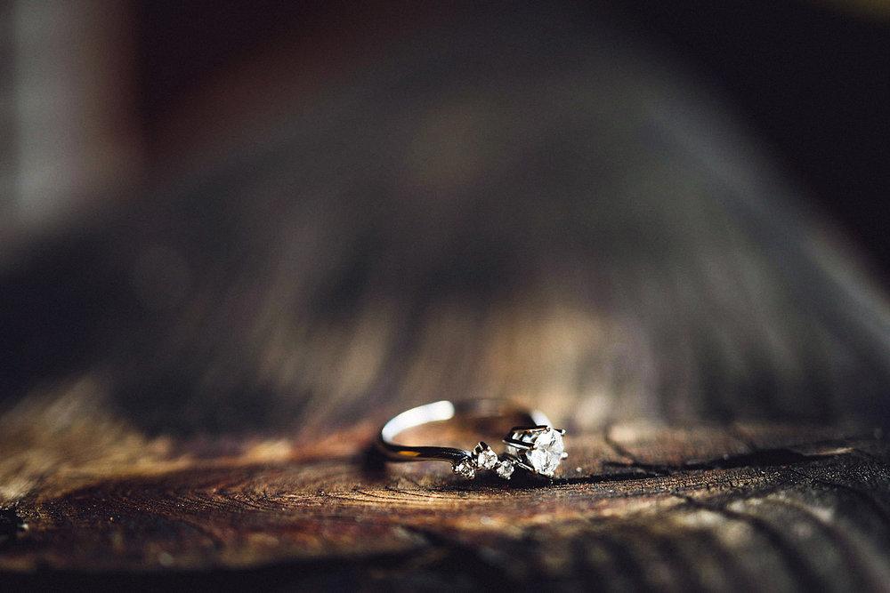 Eirik Halvorsen Blikkfangerne Hvorfor har nordmenn gifteringen på høyre hånd-13.jpg