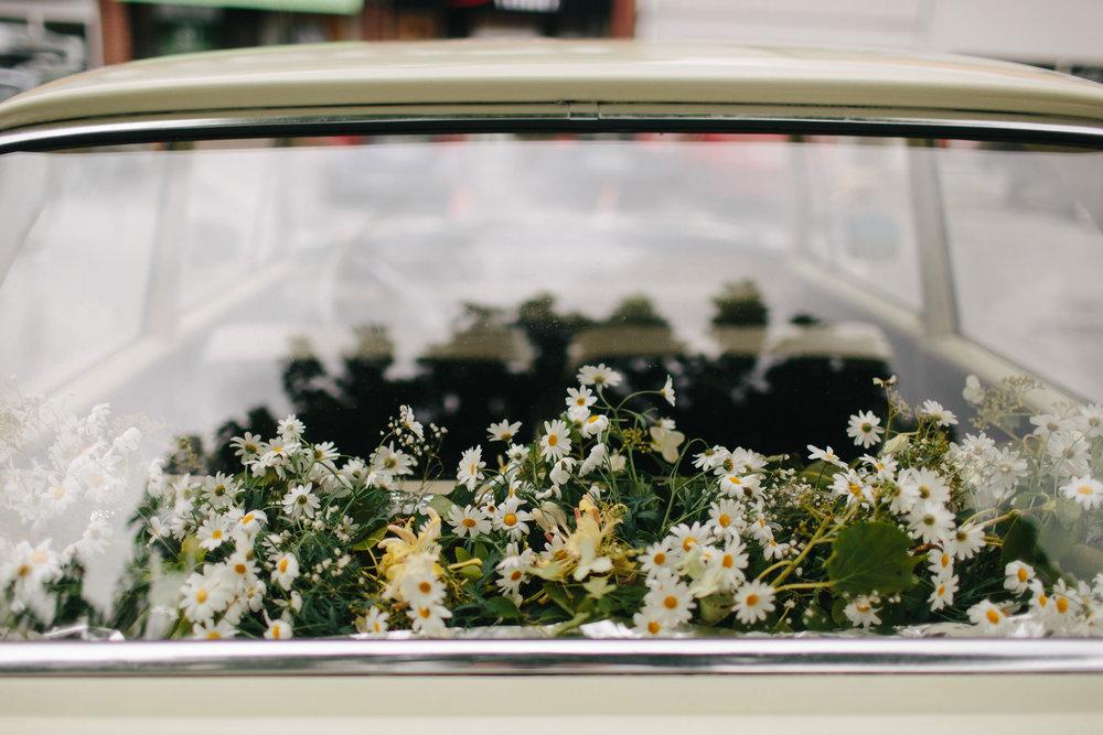 Plukk blomstene selv! Foto:  Åsmund Holien Mo