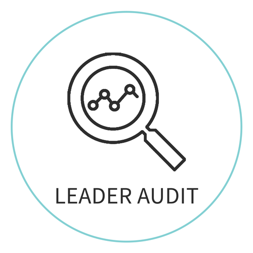 AUDIT-icon.png