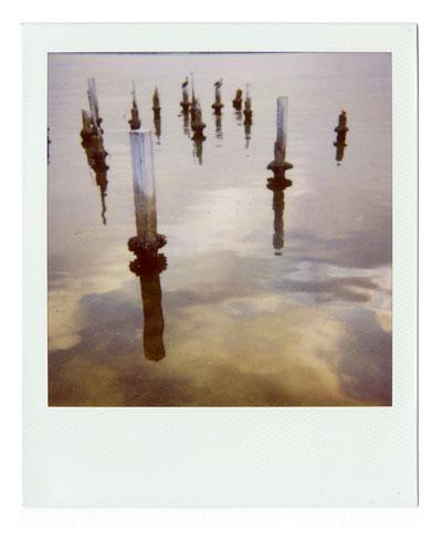 05-pilings02-web.jpg