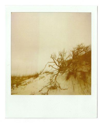 07-dunes01.jpg