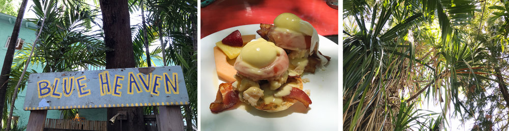 Tropical atmosphere and local lobster eggs Benedict - what's not to love at Blue Heaven!?