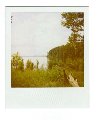 23-Mistletoe02.jpg