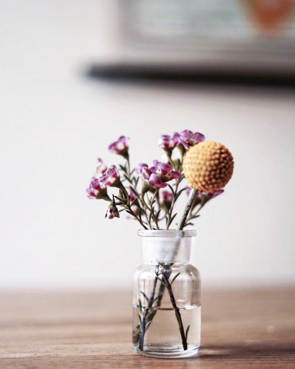 flowersfiveelephant.JPG