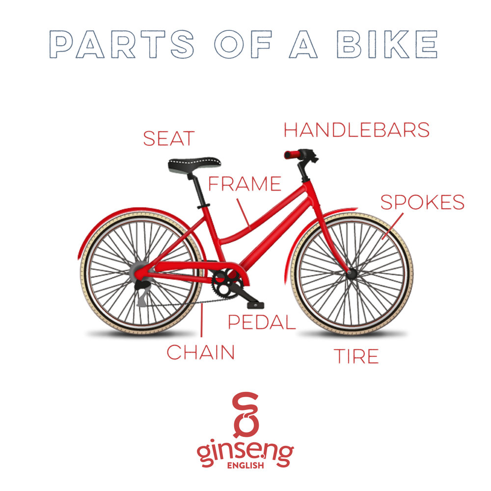 Take a look at the different parts of a bike in English!