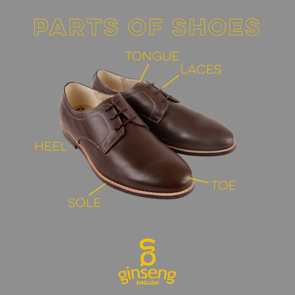 English Vocabulary - Parts of a Shoe