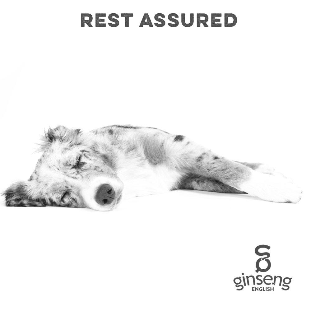 English Idiom -  Rest Assured