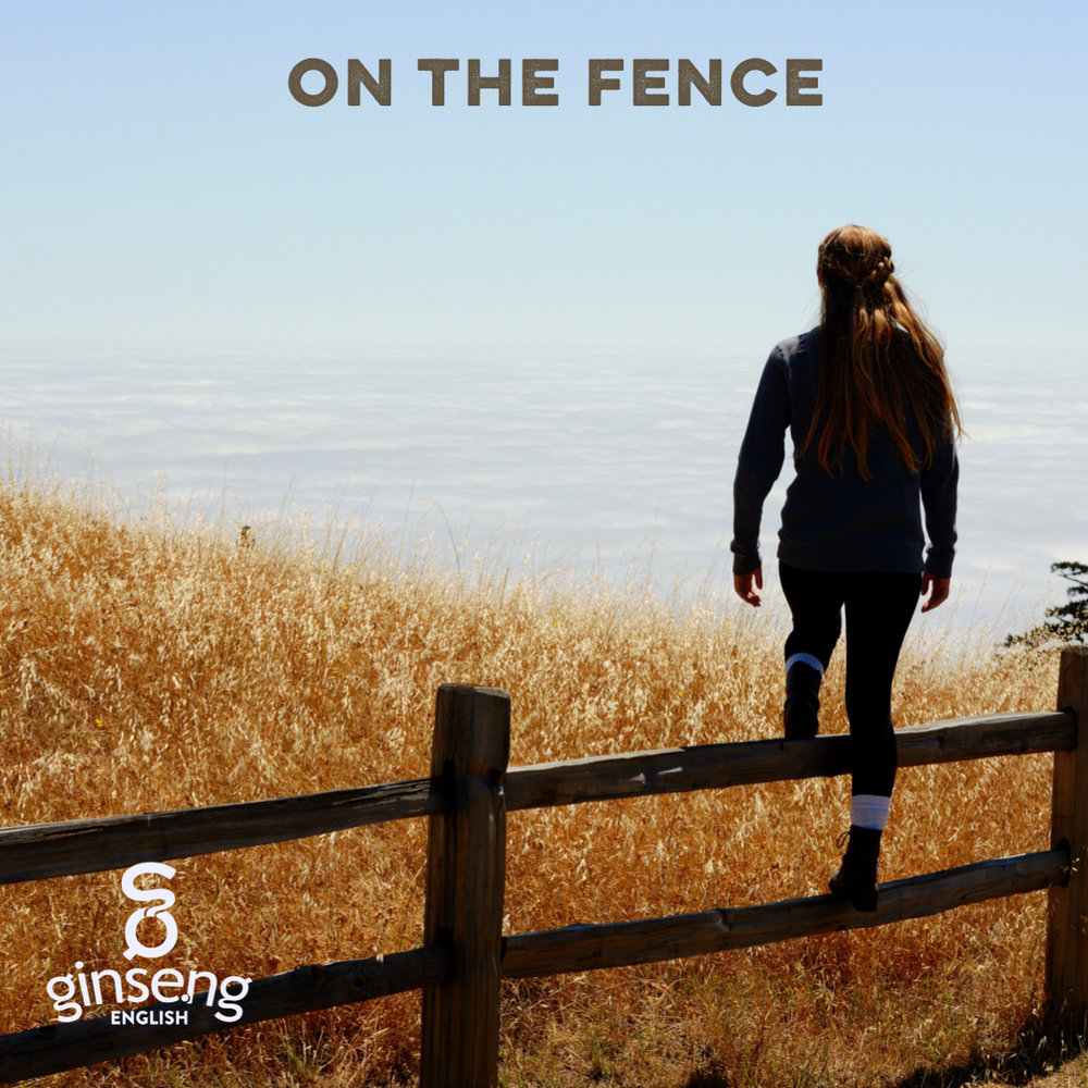 English Idiom - On the Fence