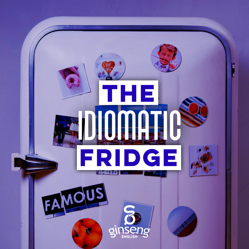 Idiomatic Fridge