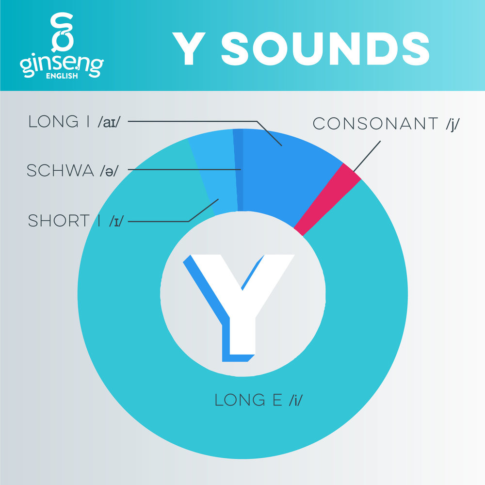Y Vowel and Consonant Sounds