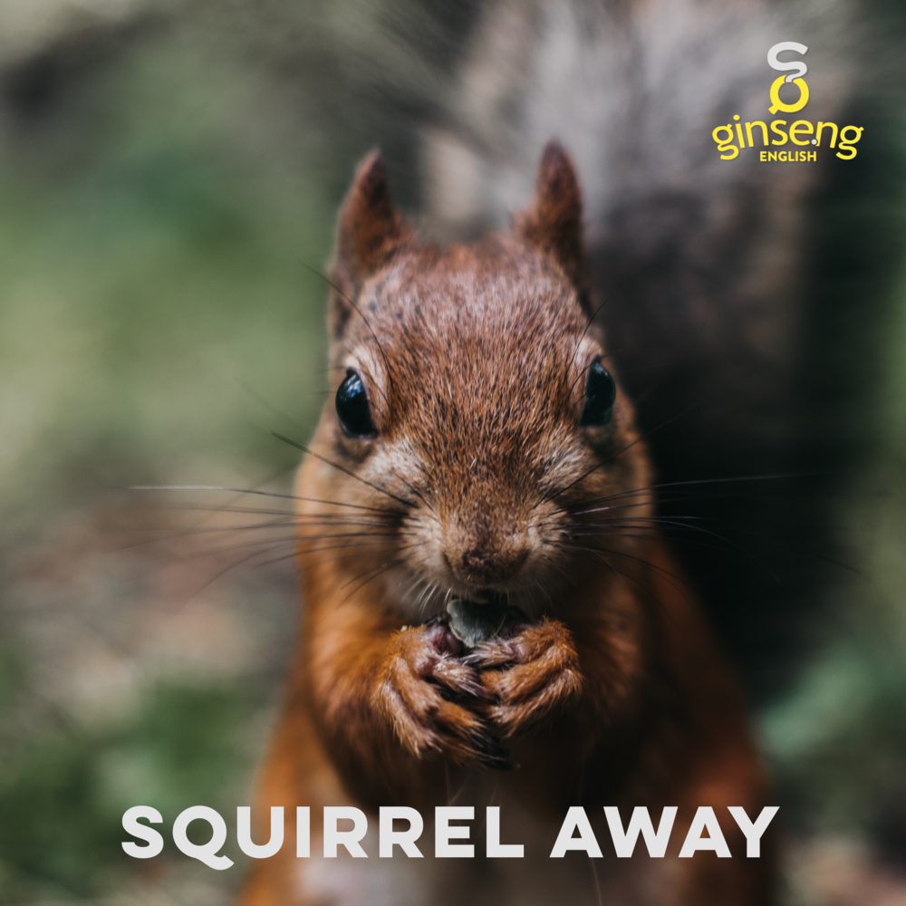 squirrel away.PNG