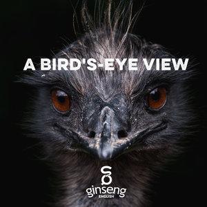 A+Bird's-eye+View.jpeg