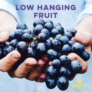 low+hanging+fruit.png
