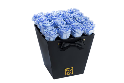 fleur d'or black and blue.png
