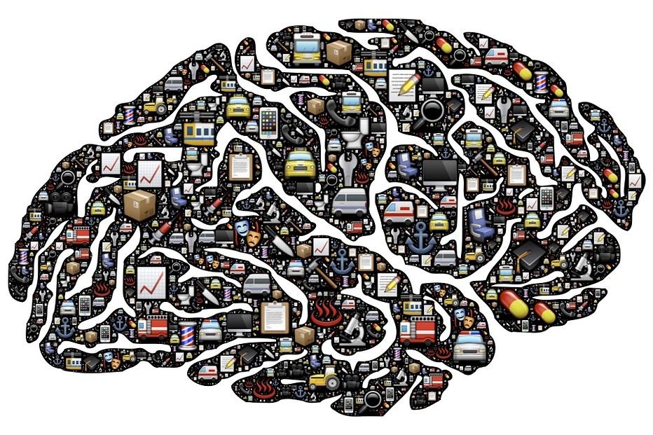 brain-954822_960_720.jpg