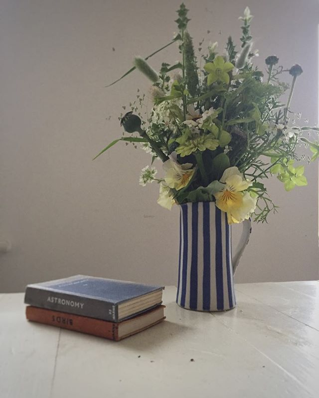 Garden gathered and another favourite jug. #britishblooms #gardenflowers #blueandwhitestripes #seasonalflowers #grownnotflown #momentofcalm #eveninglight