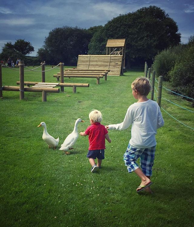 Duck food fun. #summersup #motherofboys #holidayhappiness #brothers #simplethings