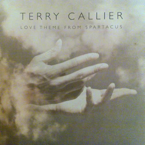 Terry Caller .jpg