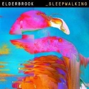 Elderbrook_Sleepwalking.jpg