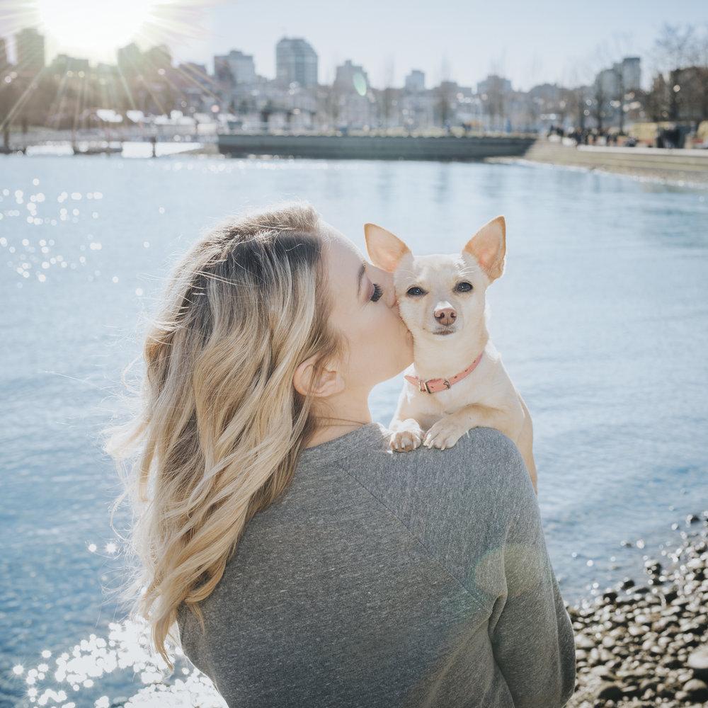 Dog_Photography_Yaletown.jpg